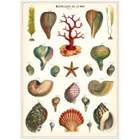 Plakat-merveilles-de-la-mer